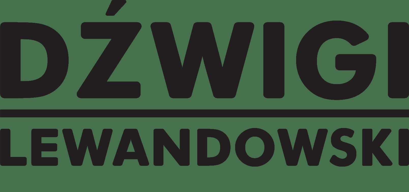 dzwigi-lewandowski.pl